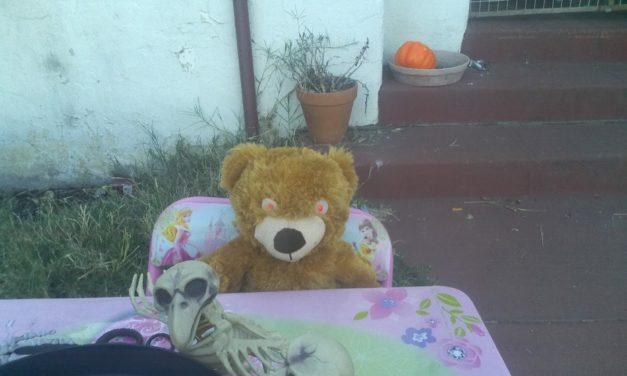 Halloween at Yusef's!