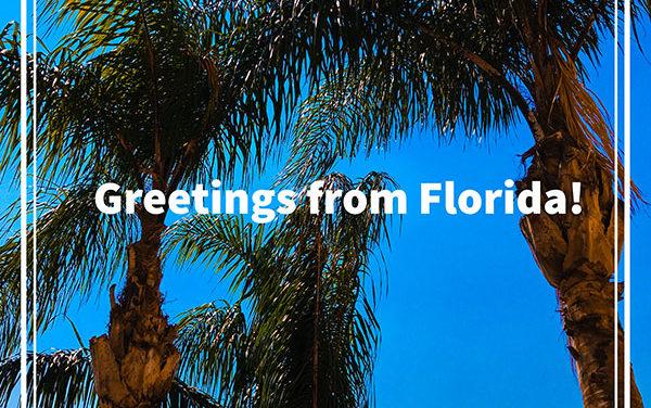 Greetings from Del Boca Vista!