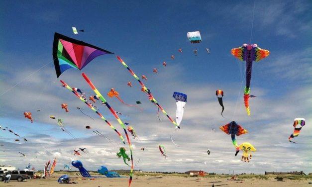 Kites!